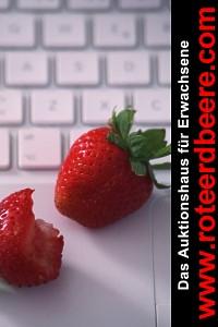 www.roteerdbeere.com - Auktionen auch für Erwachsene ab 18